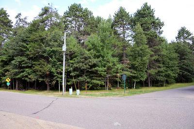 ON BLUMENSTEIN RD, Woodruff, WI 54568 - Photo 2