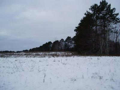 ON WORCESTER RD N, Phillips, WI 54555 - Photo 1