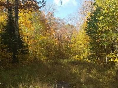 ON CTH D, Brantwood, WI 54513 - Photo 2