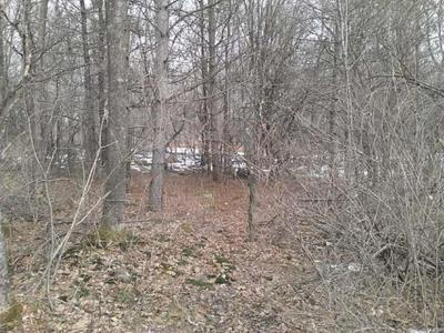 LOT 17 THORN APPLE DR, Wittenberg, WI 54499 - Photo 1