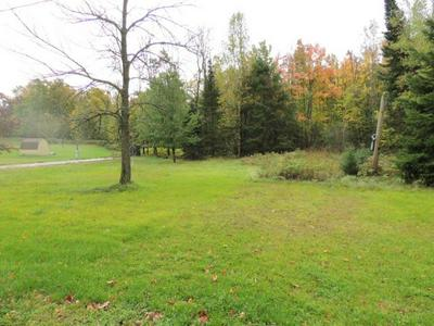 ON SHORE DR S # 3, Pickerel, WI 54465 - Photo 2