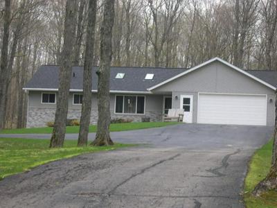 8885 GRASS LAKE RD, Pickerel, WI 54465 - Photo 1
