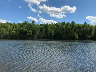 LOT B CTH Q, Pelican Lake, WI 54463 - Photo 1