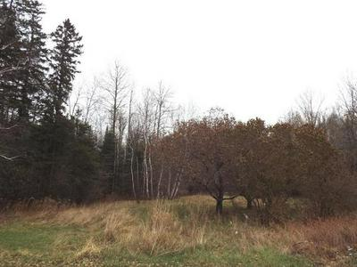 ON HWY 64 # LOT 2, Bryant, WI 54418 - Photo 1