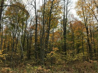 ON TURTLE CREEK RD # LOT 9, FLORENCE, WI 54121 - Photo 2
