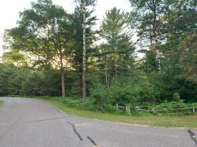 ON FOREST DR # LOT 226, Minocqua, WI 54548 - Photo 1