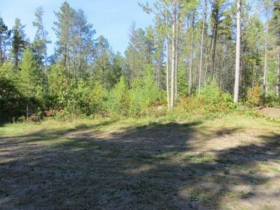 6871 HORNED OWL RD, PRESQUE ISLE, WI 54557 - Photo 1
