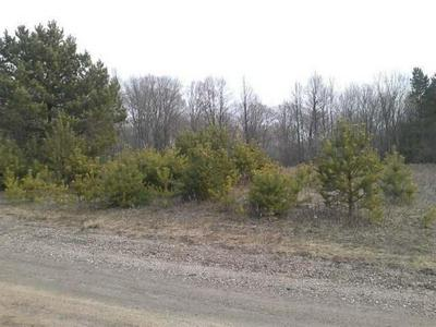 LOT 16 THORN APPLE DR, Wittenberg, WI 54499 - Photo 1