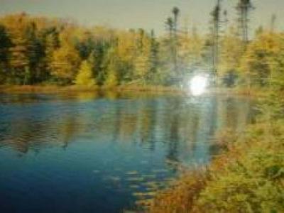 ON TIMBER LANE DR, Harshaw, WI 54529 - Photo 1