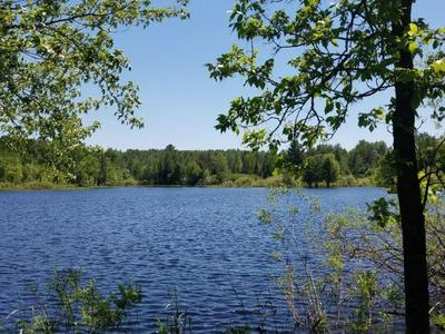 LOT A1 WALLEYE WAY, Tomahawk, WI 54487 - Photo 1