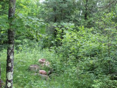 1.5 AC. W PINE LAKE RD, Hiles, WI 54511 - Photo 2