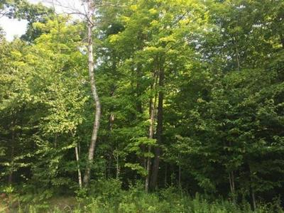 ON OLD ELCHO RD # LOT 9, Pelican Lake, WI 54463 - Photo 2
