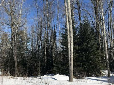 ON BEAR LAKE RD # 4, Wabeno, WI 54566 - Photo 2