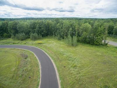 16 & 17 CTH D, Holcombe, WI 54745 - Photo 1
