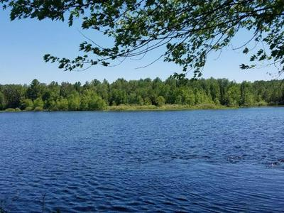 LOT A1 WALLEYE WAY, Tomahawk, WI 54487 - Photo 2
