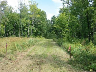 ON BERRY RD, PRENTICE, WI 54556 - Photo 1