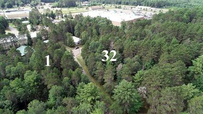 ON BLUMENSTEIN RD, Woodruff, WI 54568 - Photo 1