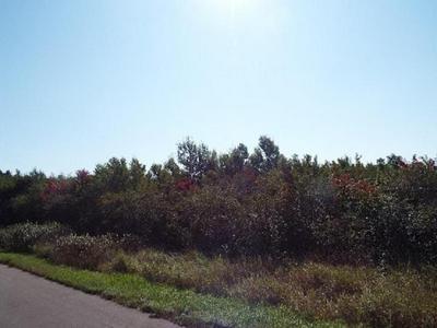ON POPPLE RD, Deerbrook, WI 54424 - Photo 1