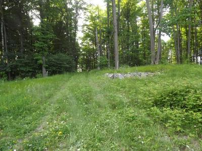 LOT 14 LITTLE LONG LAKE LN, Wabeno, WI 54566 - Photo 2
