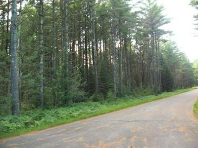 LOT 21 CAMP NOKOMIS RD, MERCER, WI 54547 - Photo 2