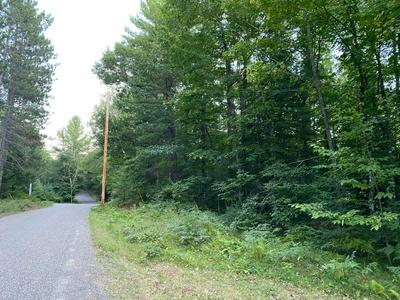 ON S MANUEL LK RD, Phelps, WI 54554 - Photo 2