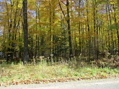 ON CTH DD # LOT 5, Pickerel, WI 54465 - Photo 2