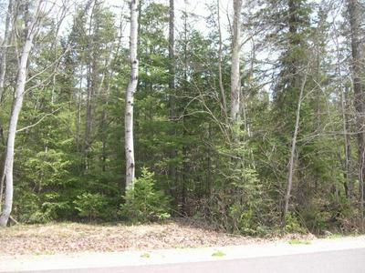 9 & 10 W PINE LAKE RD, ARGONNE, WI 54511 - Photo 1