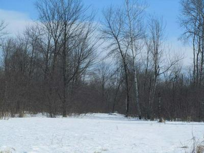 0 OTHER, Junction City, WI 54443 - Photo 1