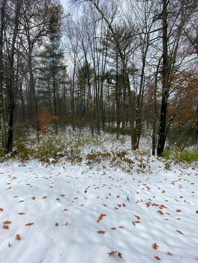 LOT A EAST BAY LN, Tomahawk, WI 54487 - Photo 1