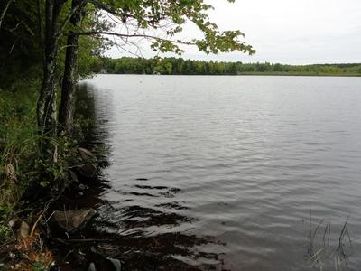 LOT 4 FORRESTER RD, Tomahawk, WI 54487 - Photo 2