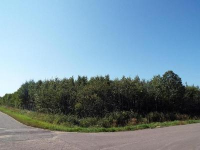 ON POPPLE RD, Deerbrook, WI 54424 - Photo 2