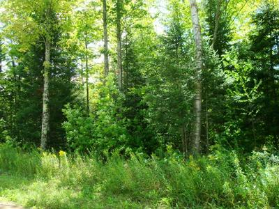 ON CTH Q, RINGLE, WI 54471 - Photo 1