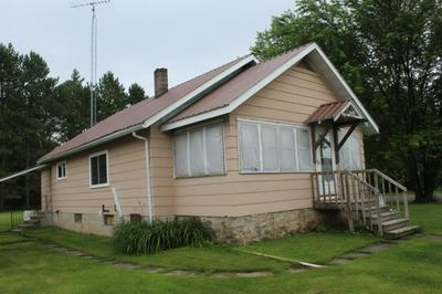 10002 CYPRESS ST, Newald, WI 54511 - Photo 1