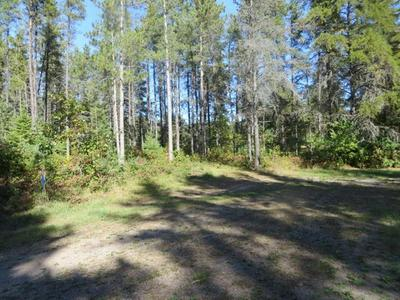 6871 HORNED OWL RD, PRESQUE ISLE, WI 54557 - Photo 2