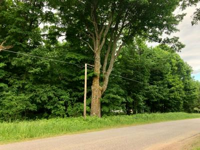 OFF CTH Q # LOT F, Pelican Lake, WI 54463 - Photo 2