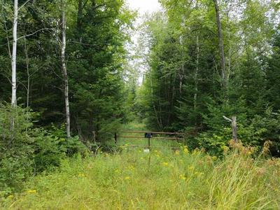 N6504 CTH D, Brantwood, WI 54513 - Photo 1