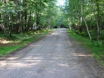 LOT 17 LUNDY LN, Woodruff, WI 54568 - Photo 2