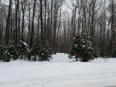 ON CTH D, Brantwood, WI 54513 - Photo 1
