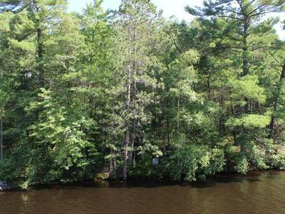 LOT 3 CLEAR LAKE RD, ELCHO, WI 54428 - Photo 1