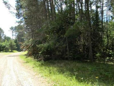 ON BLUE JAY LN # LOT 19, Elcho, WI 54428 - Photo 2