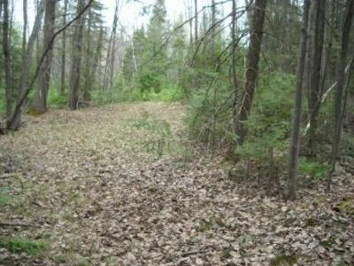 ON CTH S, Phillips, WI 54555 - Photo 2