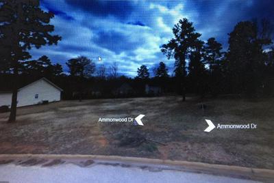 215 AMMONWOOD DR, Greenwood, SC 29649 - Photo 1