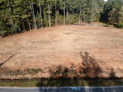 411 OLDE PUCKETTS FERRY RD, Greenwood, SC 29649 - Photo 2