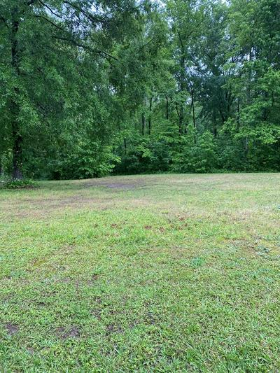 202 SWING ABOUT, Greenwood, SC 29649 - Photo 2