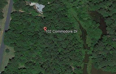 102 E COMMODORE DR, Cross Hill, SC 29332 - Photo 2