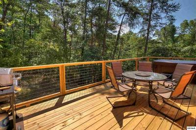 3046 ENGLE TOWN RD, PIGEON FORGE, TN 37862 - Photo 2