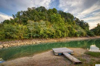 102 LAKE BREEZE DR, Dandridge, TN 37725 - Photo 2