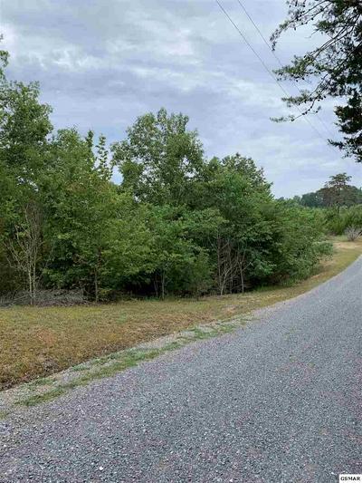 135 HIDDEN COVE WAY, Sevierville, TN 37876 - Photo 2