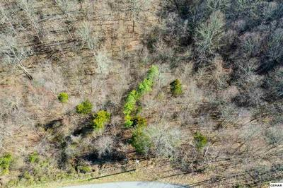 LOT 47 TRANQUILITY TRAIL, Dandridge, TN 37725 - Photo 2