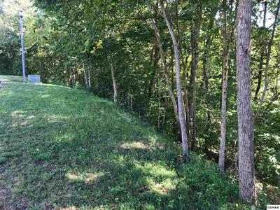 LOT 38 LONGSPUR TRAIL, Sevierville, TN 37862 - Photo 2